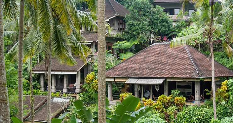 Oneworld Retreats in Ubud Bali