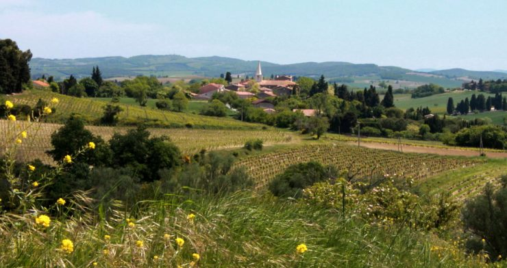 Walking, Writing & Wellness Retreats at the Razès Gîtes, SW France