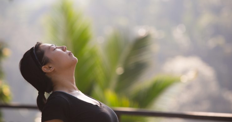 Yoga and Mindfulness Retreat