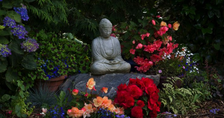 4 Day Yoga and Mindfulness Retreats in Wexford, Ireland