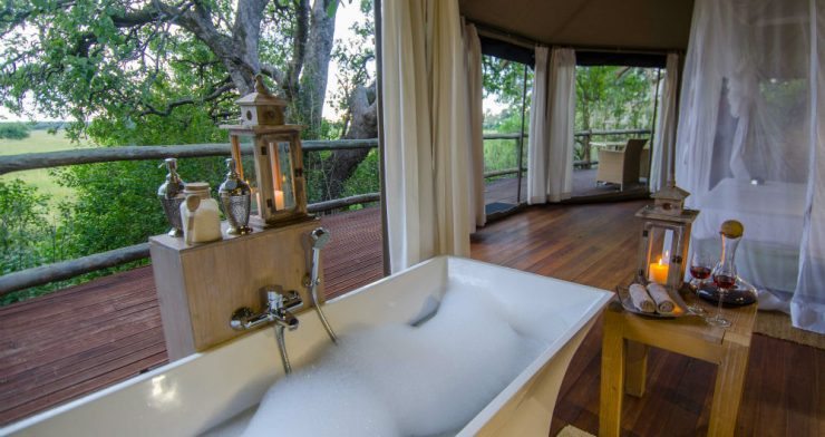 Yoga Wildlife Retreat at Exclusive Luxury Lodge