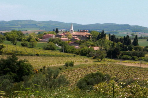 Walking, Writing & Wellbeing Retreats at the Razès Gîtes, SW France