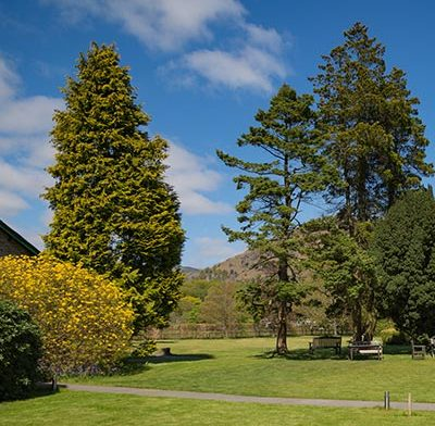 Weekend well-being mindfulness retreat in Grasmere, November 2020