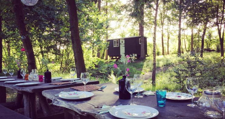 Eco glamping and yoga retreat in the Surrey Hills